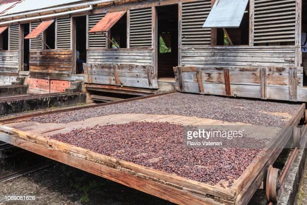 Grenada, Douglaston Spice Estate