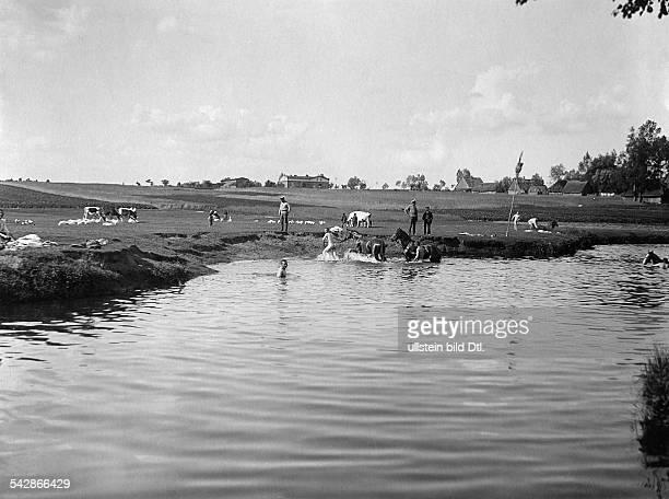 Grenzstation an der deutschrussischen Grenze Kosaken baden ihre Pferde im Fluss undatiert vermutlich um 1910Foto Conrad HünichFoto ist Teil einer...