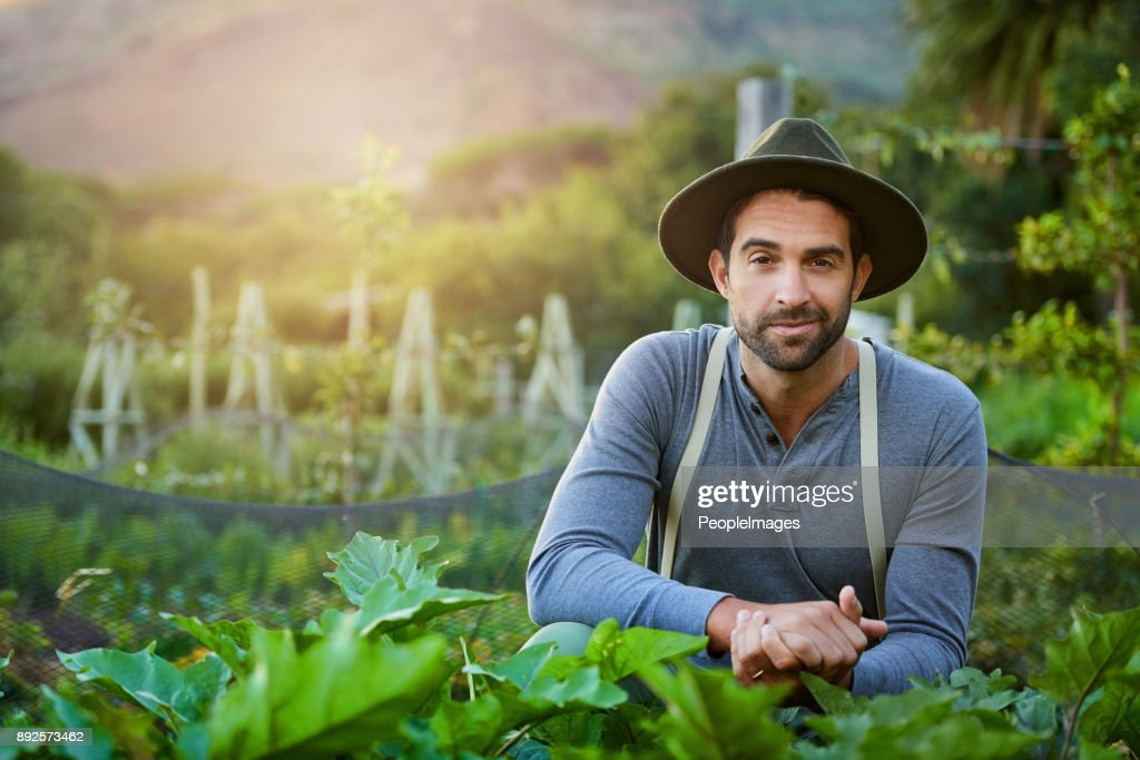 I grew this garden from the ground up : Stock Photo