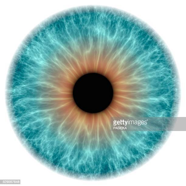 grey eye, artwork - iris eye stock photos and pictures