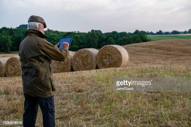 grey haired man using digital tablet in a field - johnfscott stock pictures, royalty-free photos & images