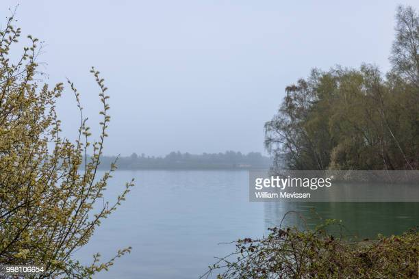 grey morning view - william mevissen foto e immagini stock