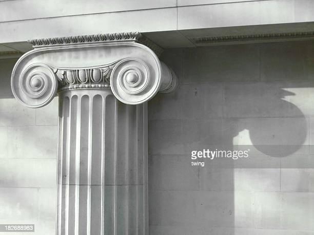 Detalles de la columna