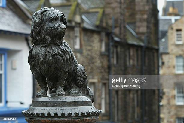 'Greyfriars Bobby' watches over Greyfriars Cemetary on March 25 2004 in Edinburgh Scotland Two Scottish teenagers face charges of 'violation of a...