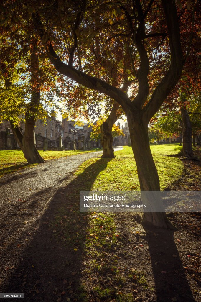 Greyfriars Shadows : Stock Photo