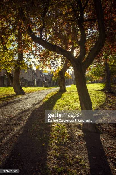Greyfriars Shadows
