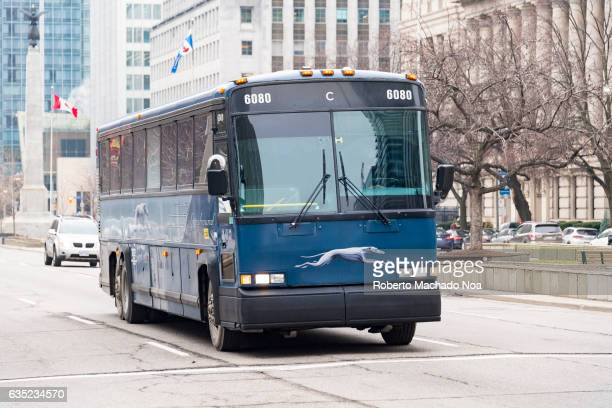 Greyhound bus omnibus in University Avenue Greyhound Lines Inc usually shortened to Greyhound is an intercity bus common carrier serving over 3800...