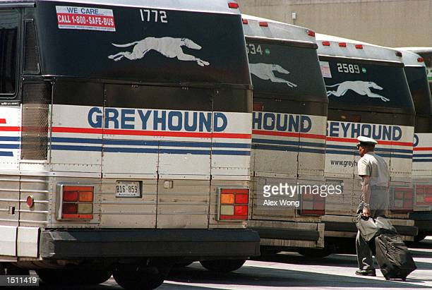 Greyhound driver walks towards his bus at the Greyhound terminal August 17 2000 in Washington Greyhound Lines Inc said on August 16 its parent...