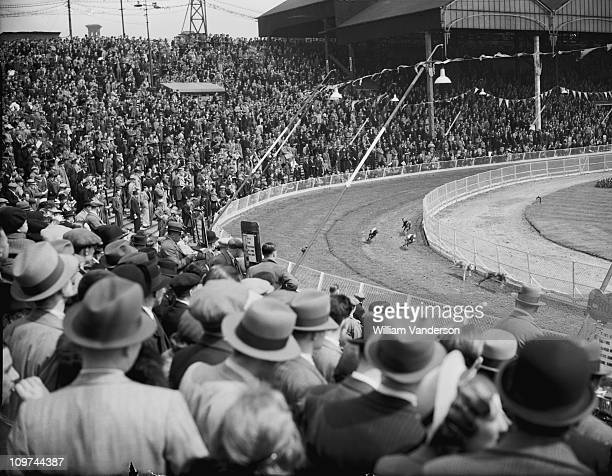 Greyhound racing at Clapton Stadium in London 17th May 1937