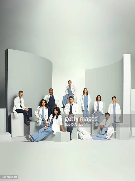 S ANATOMY Grey's Anatomy stars Ellen Pompeo as Meredith Grey Patrick Dempsey as Derek Shepherd Sandra Oh as Cristina Yang Katherine Heigl as Isobel...