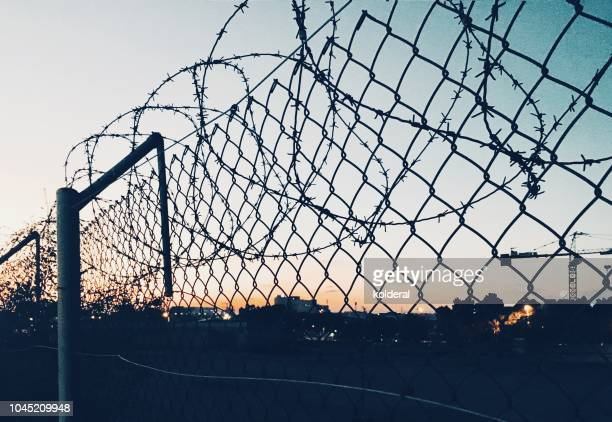 grid fence with barbed wire against sunset - refugee camp stock pictures, royalty-free photos & images