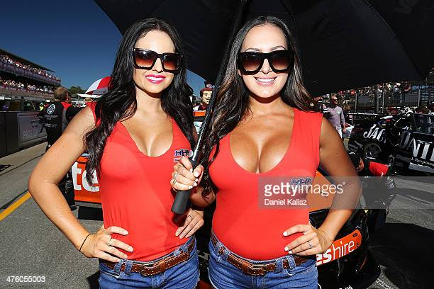 V8 Grid Girl Stock Photos And Pictures Getty Images