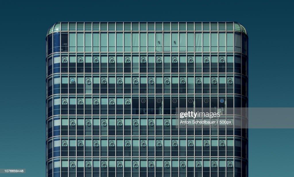 grid : Stock Photo
