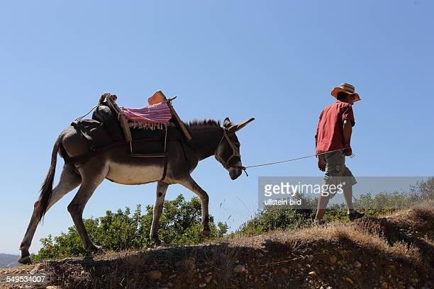 Griechenland Mann mit einem Esel