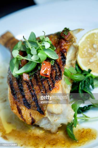 Grilled and Plated John Dory Fish Dinner