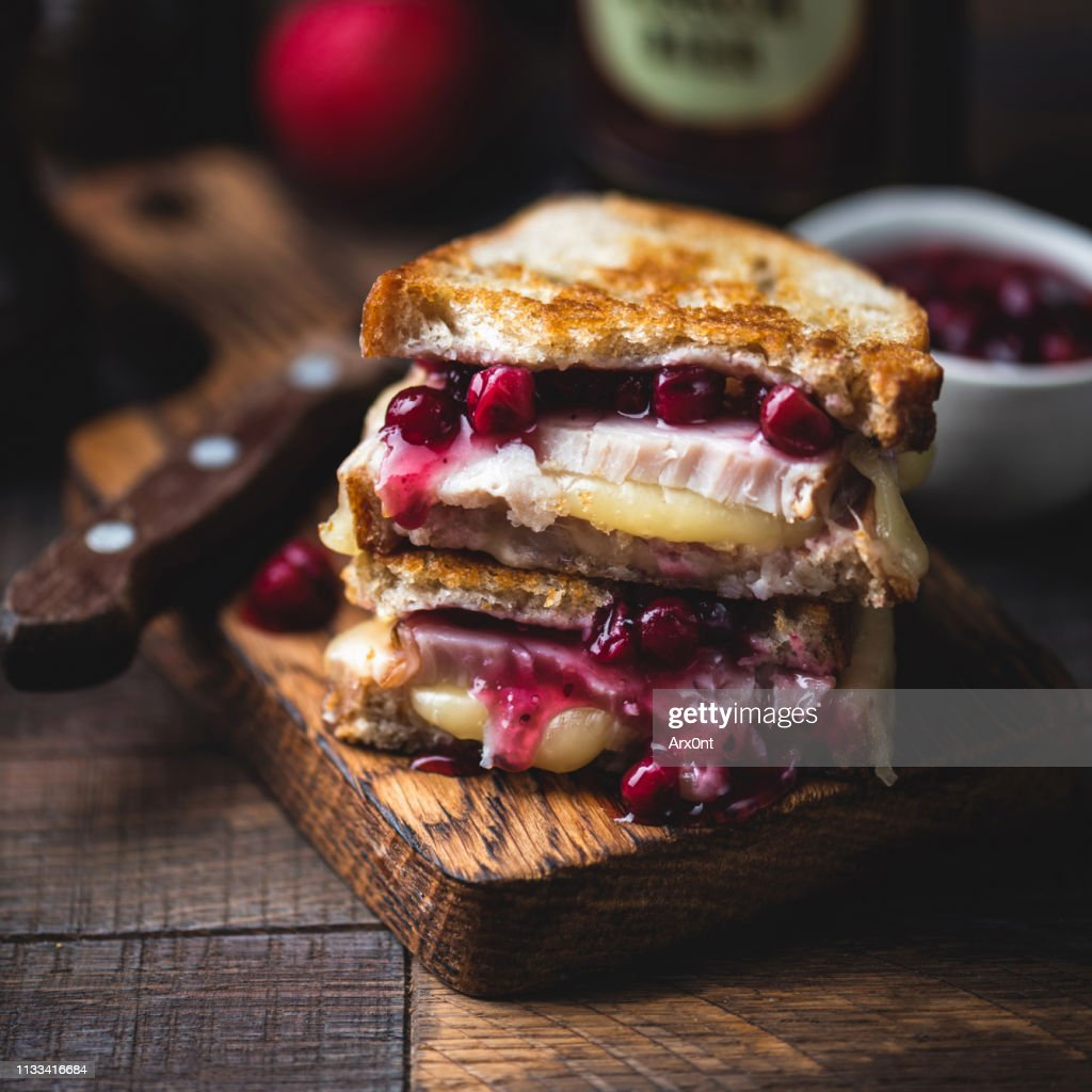 Grilled cheese sandwich with turkey and cranberry sauce : Stock Photo