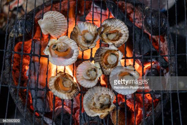 Grilled Clam with charcoal fire, BBQ Sea Food