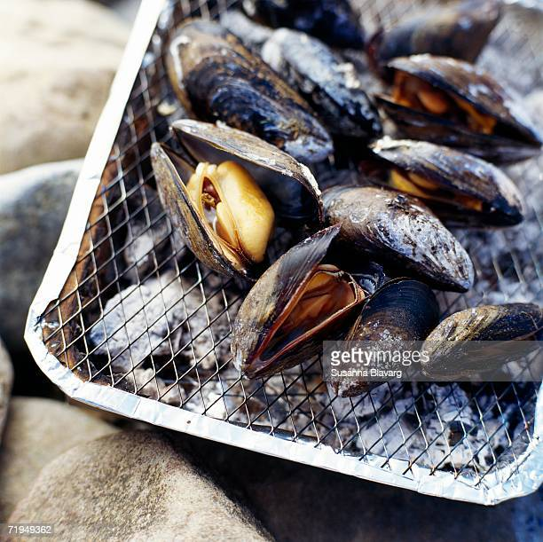 Grilled clams on a grill.