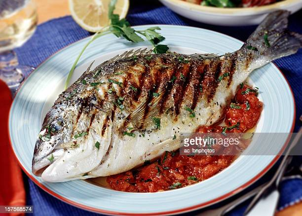 Grilled Gilt-head Bream