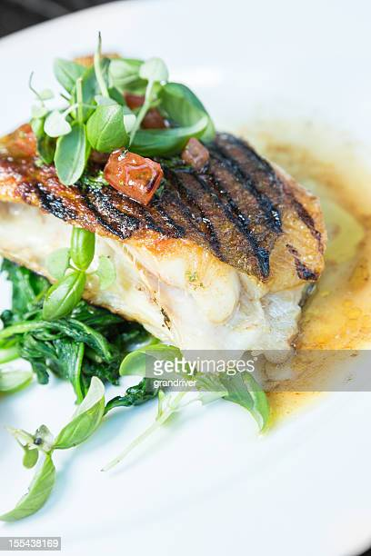 Grilled John Dory Fish