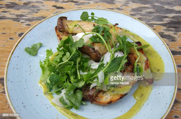 Grilled king brown mushrooms and poached eggs on toasted sourdough bread with herbed feta cheese, tarragon and truffle oil