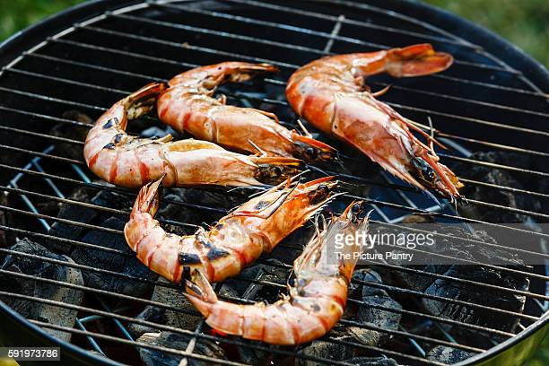 Grilled king size Prawns on grill BBQ