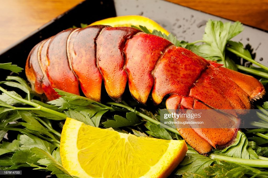 Grilled Lobster : Stock Photo