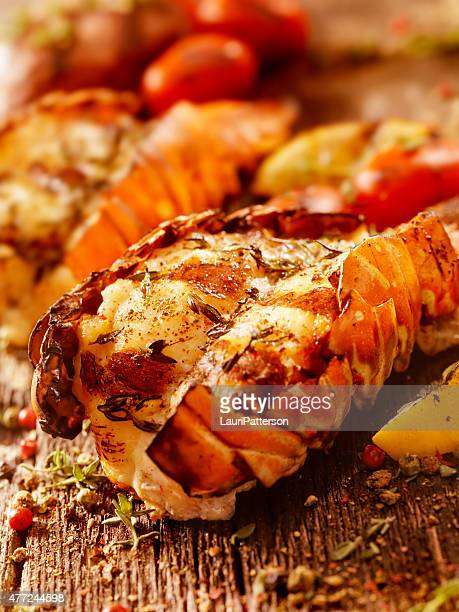 bbq grilled lobster tails - tail stock pictures, royalty-free photos & images