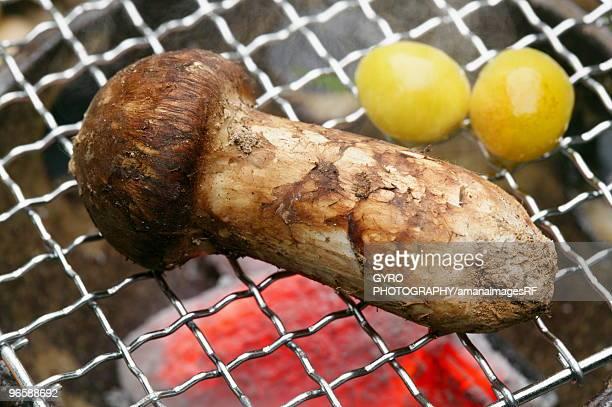 Grilled matsutake mushroom and gingko
