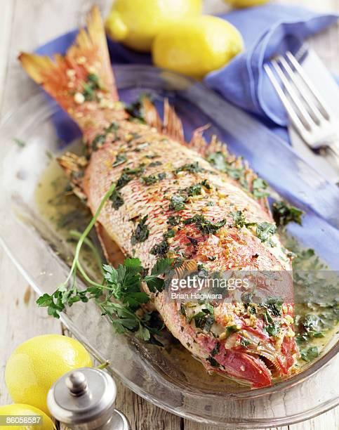 Grilled perch with lemon parsley vinaigrette