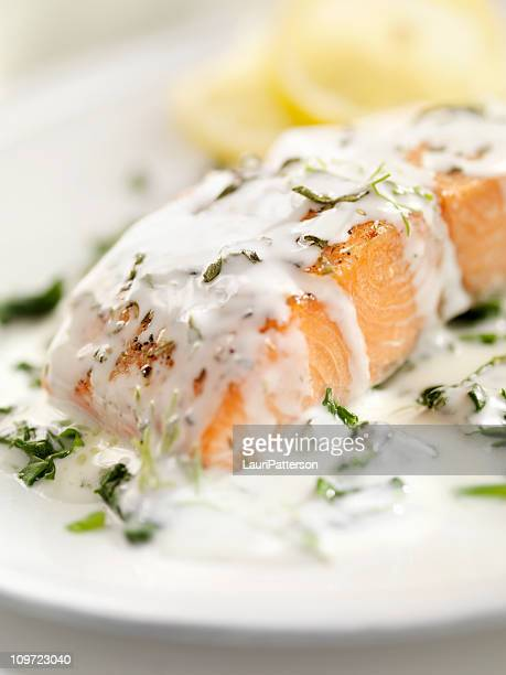 grilled salmon with spinach - bechamel sauce stock photos and pictures