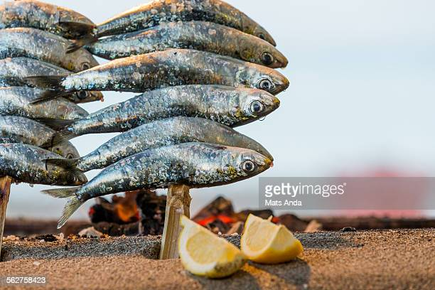Grilled sardines and lemon
