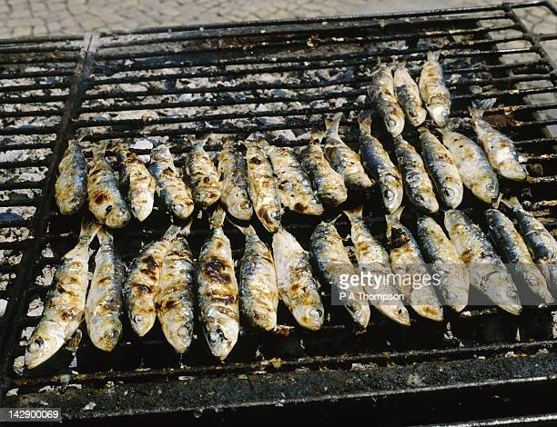 grilled sardines, portimao, algarve, portugal - portimao stock photos and pictures
