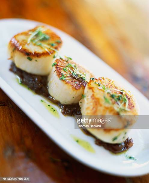 grilled scallops on bed of onion confit, close-up - scallop stock photos and pictures