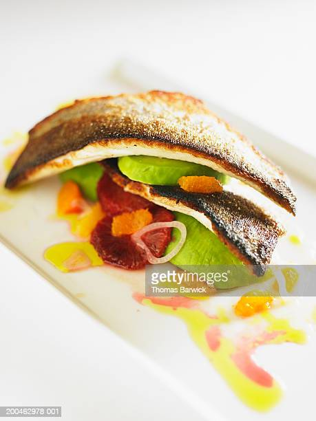 grilled sole with avocado, blood orange, tangerines and olive oil - linguado da areia imagens e fotografias de stock