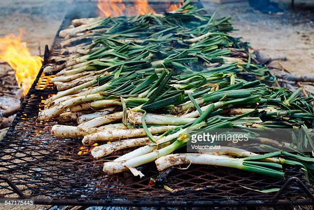 Grilling typical calçots spring onion in Catalonia