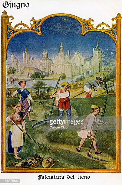 Grimani Breviary June Scene entitled Falciatura del fieno Flemish illuminated manuscript produced in Ghent and Bruges c 15151520 Artist included...