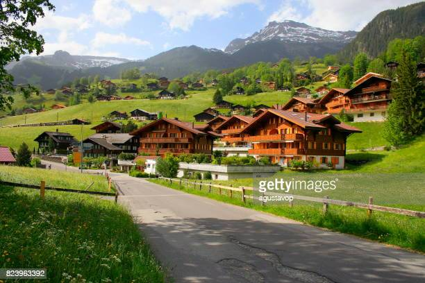 grindelwald alpine village, rustic swiss chalets street - fairy tale landscape at blossoming flowers springtime: idyllic alpine flowerbed valley and wildflowers meadows countryside, dramatic snowcapped alps, bernese oberland,swiss alps, switzerland - swiss culture stock pictures, royalty-free photos & images