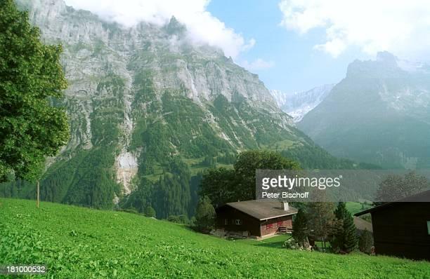 Grindelwald/Schweiz, Europa, Reise, , Berghütte, Natur, Berge, Alpen, Bäume, Wiese,