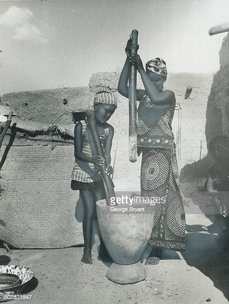 Grinding their food with pestles and mortar a Massaba mother and her daughter use the tradition way Like other aspect of the culture of this African...