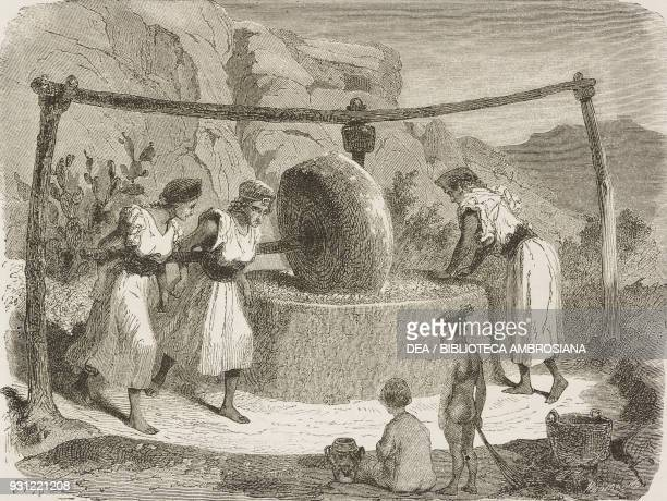Grinding wheel for grinding the olives Women's work drawing by Stop from a sketch by Duhousset from Excursion in Great Kabylia Notes and sketches...