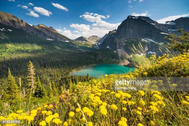 grinnell geleira trail - parque nacional glacier - fotografias e filmes do acervo