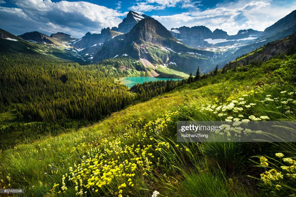 Grinnell Glacier Trail : Stock Photo