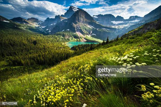 grinnell glacier trail - national park stock pictures, royalty-free photos & images