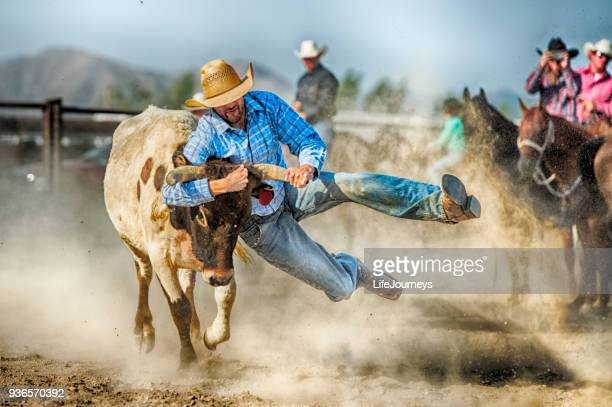 gritty tough cowboy during the steer wrestling competition hanging on to a land steers horns as he prepares to control him and bring him to the ground - cowboy boot stock pictures, royalty-free photos & images