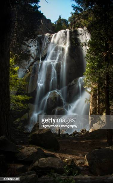 grizzly falls bathed in glorious light - highlywood stock photos and pictures