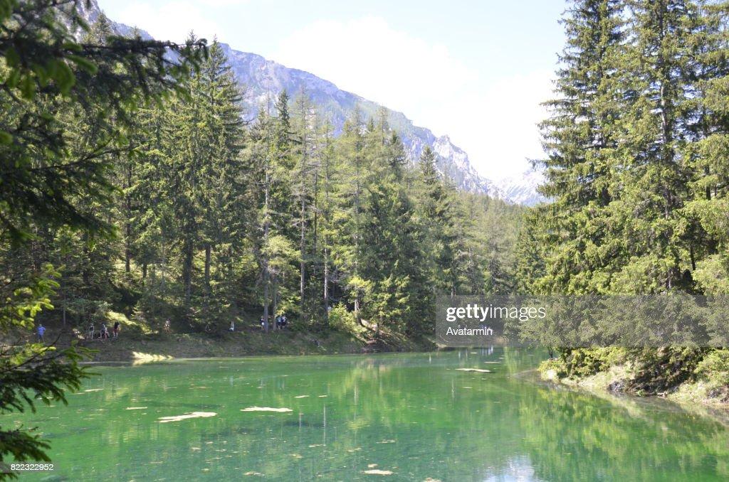 Grüner see (Green lake) : Stock Photo