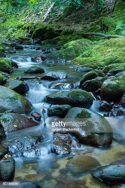 Grobbach creek near Geroldsauer Wasserfall waterfall, Schwarzwald, Baden-Baden, Baden-Wurttemberg, Germany