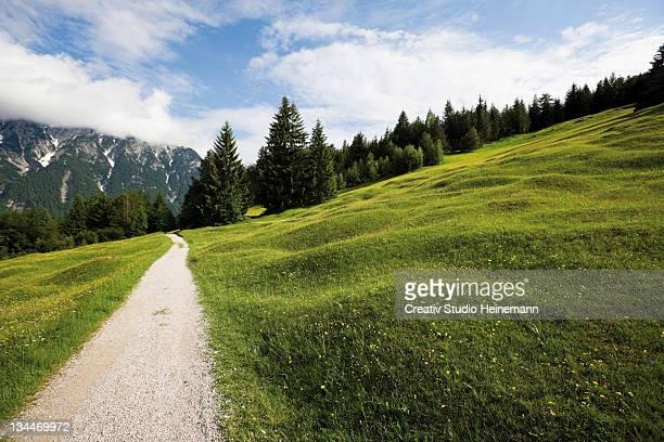 Groeblalm mountain pastures near Mittenwald, Karwendelgebirge mountains, Werdenfelser Land area, Upper Bavaria, Bavaria, Germany, Europe