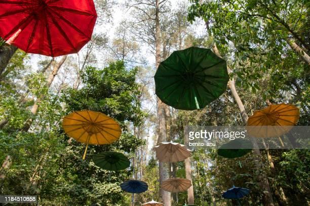 grojogan sewu waterfall tawangmangu - java stock pictures, royalty-free photos & images